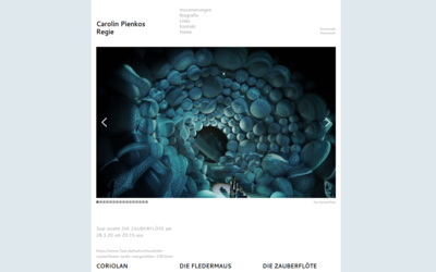 Webdesign aus Wien: Externes Design; Umsetzung im Auftrag eines Partners; Kunde: Carolin Pienkos